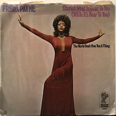 FREDA PAYNE:CHERISH WHAT IS DEAR TO YOU(WHILE IT'S NOT TO YOU)(JACKET B)