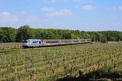 BB 67443 à Jonzac (17) - Photo of Meux