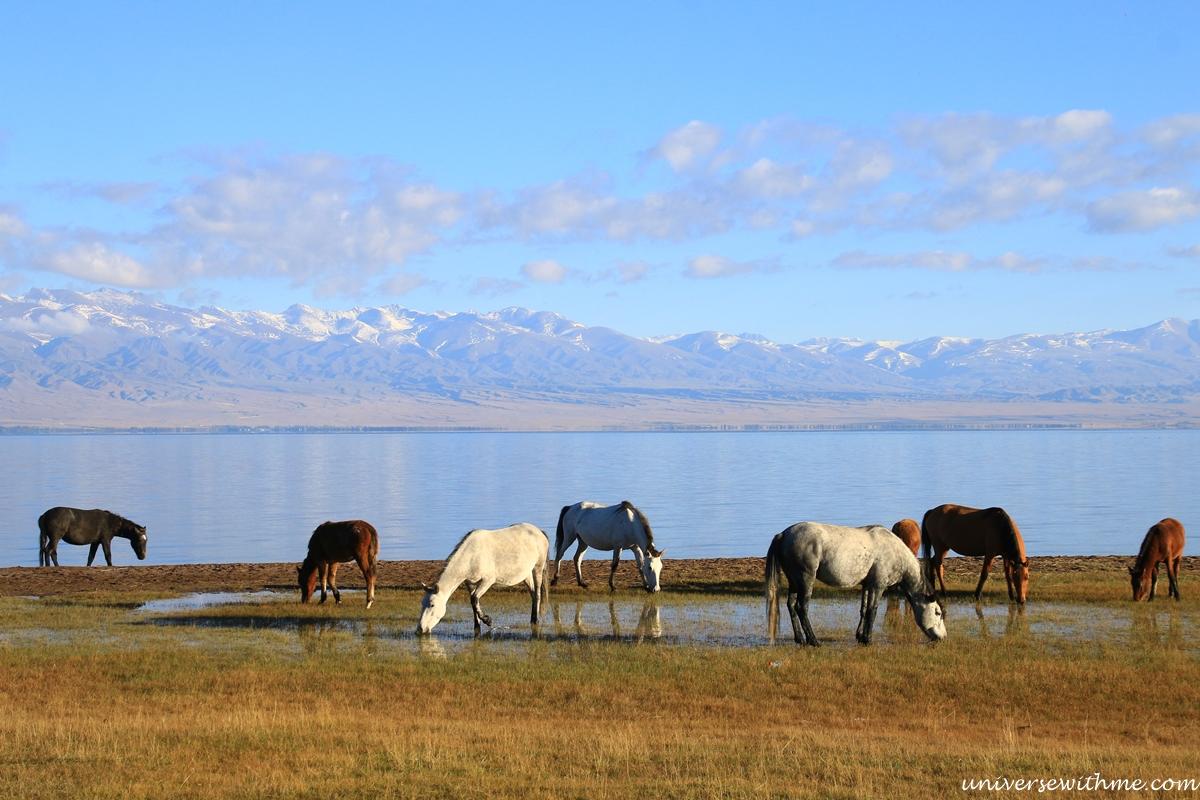 Kyrgyzstan travel_355