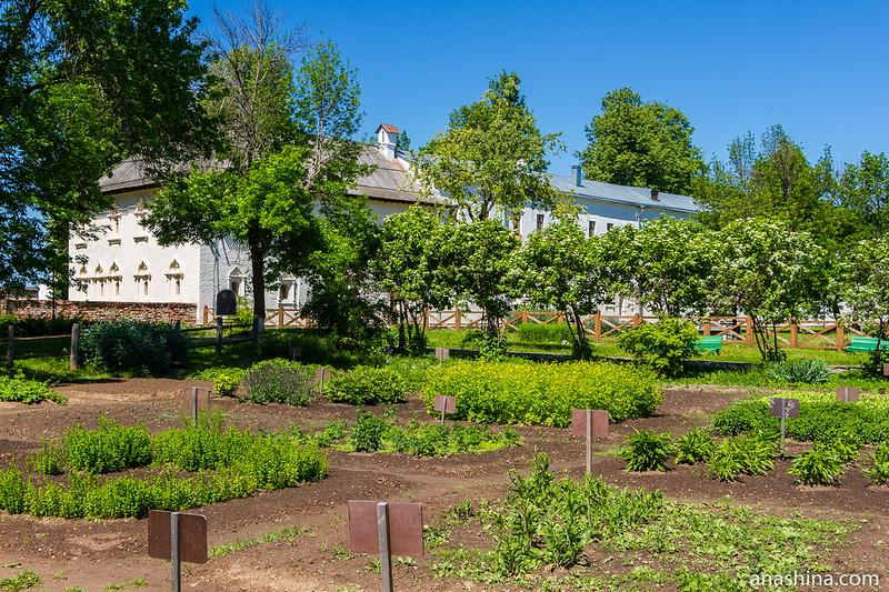 Аптекарский огород, Спасо-Евфимиев монастырь, Суздаль