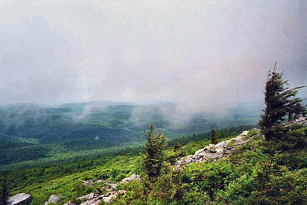 The summit of Spruce Knob is often covered in clouds. This image depicts the west side of the summit. Photo taken by Kenneth E. Harker in 1998.