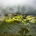 Vista desde el paramo, SFF Iguaque , Boyaca by Sebhue