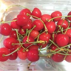 sakuranbo❤︎ ・ ・ ・ #さくらんぼ #山形産 #東京 #果物 #sakuranbo #yamagata #tokyo #japan #fruit
