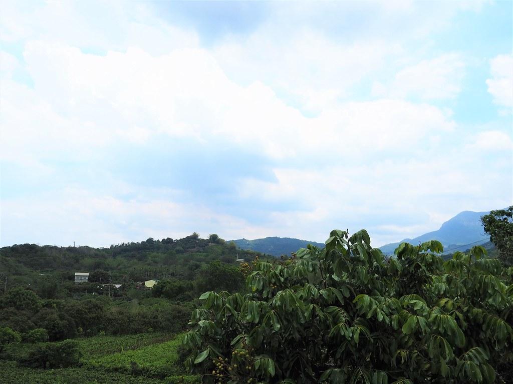 東山仙湖農場 (2)