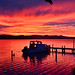 Bucklands Jetty sunrise by lauriemorrison88
