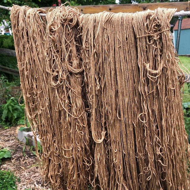 Rhubarb leaf dyed wool yarn
