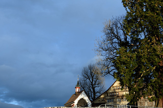 Featured medium photo of Rheintal on TripHappy's travel guide