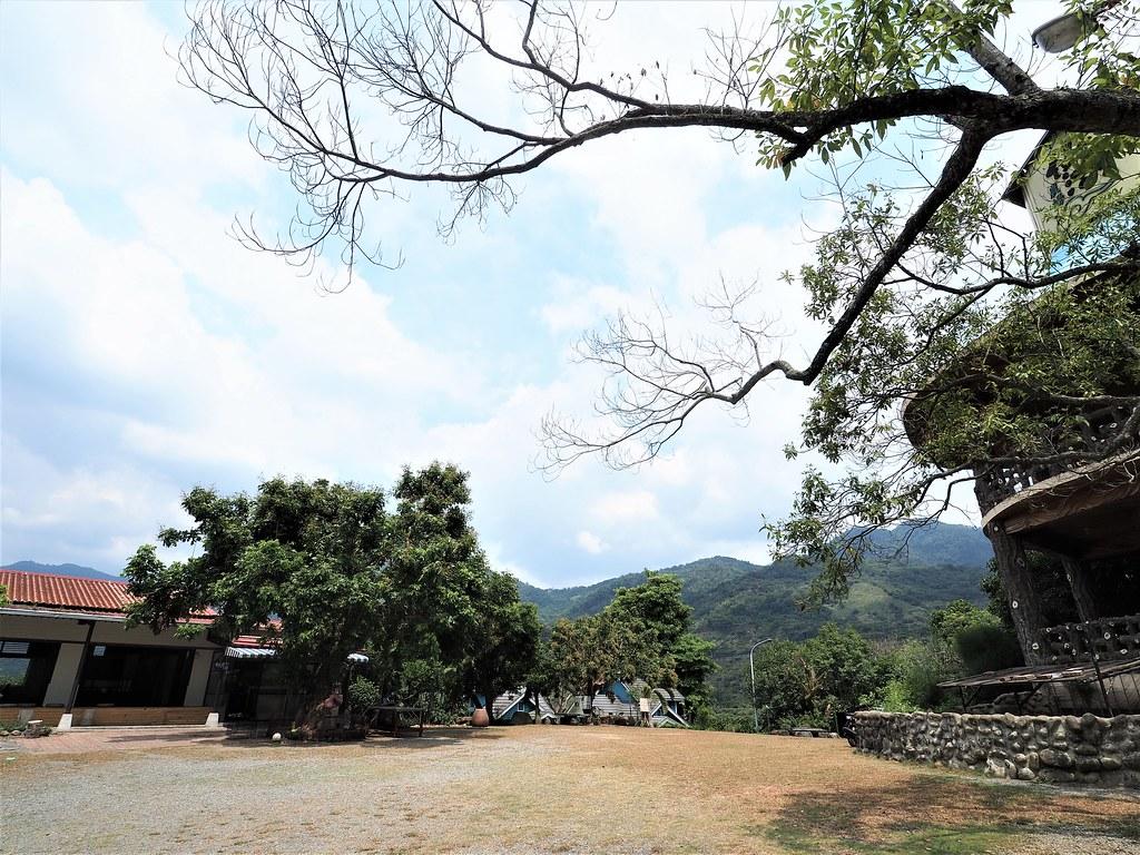 東山仙湖農場 (3)