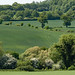 View from the Ayot Greenway, between Wheathampstead and Ayot Green