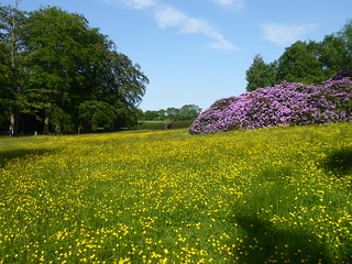 Creskeld Hall Gardens, near Otley, West Yorkshire