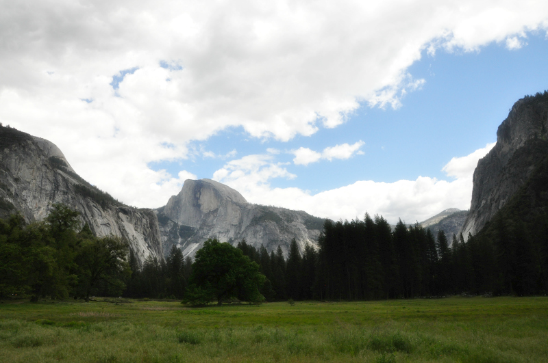 Yosemite Cook's Meadow @ Mt. Hope Chronicles