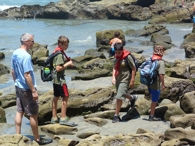 2018-06-09 Tidepools and visit to Scripps Aquarium
