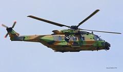 NH Industrie NH90 ~ EAU Armée de terre