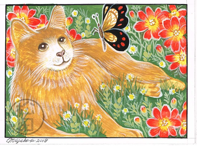 Orange Cat with butterfly and Bidens Campfire