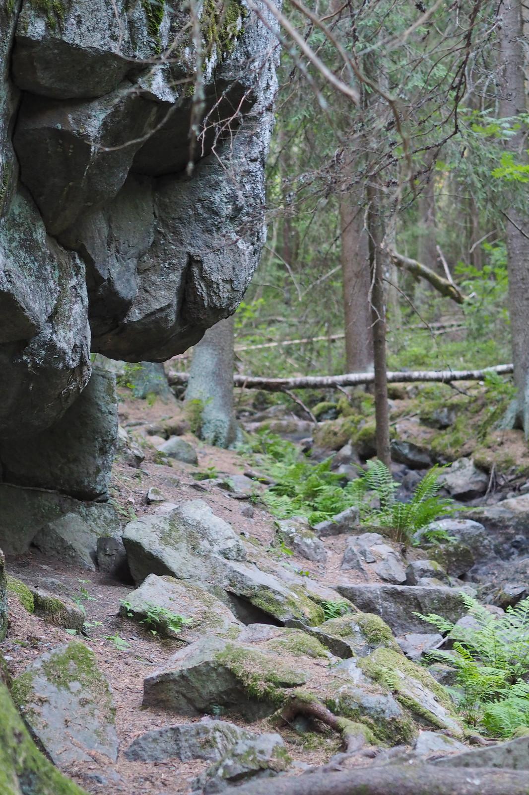 halimasjärvi luonnonsuojelualue