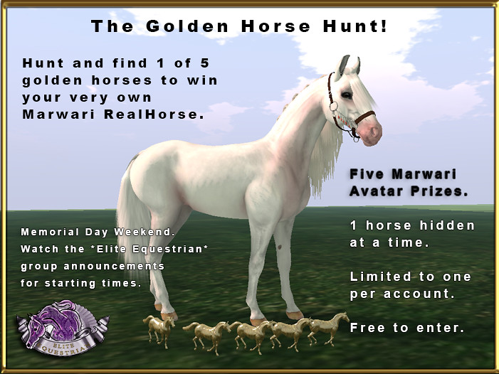The Golden Horse Hunt: Win a FREE Marwari Horse Avatar!