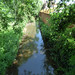 Cain Brook at Coughton Court
