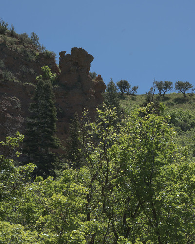boulder rock cliff escarpment pinnacle stone conglomerate fist ridge tree green canyon citycreek saltlakecity lebarodea nikond7500 utah wasatch red boxeldertrees thefistinthefoliage curlleafmountainmahogany littleblackmountain maple