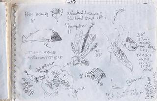 Sketchbook #113: Trip to Bonaire - Underwater Sketching / Scuba Diving with a Sketchbook