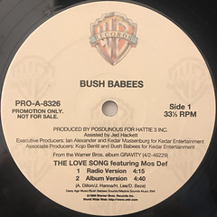 BUSH BABEES:THE LOVE SONG(LABEL SIDE-A)