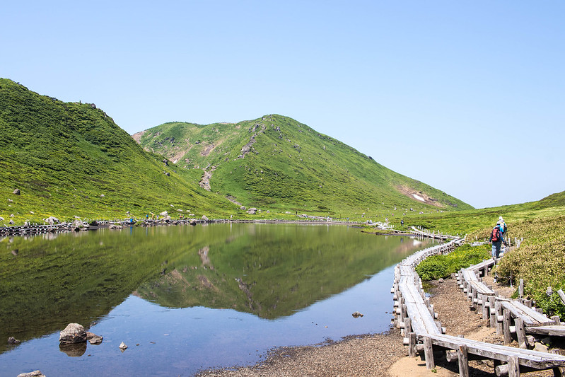 20170708-秋田駒ヶ岳_0392.jpg