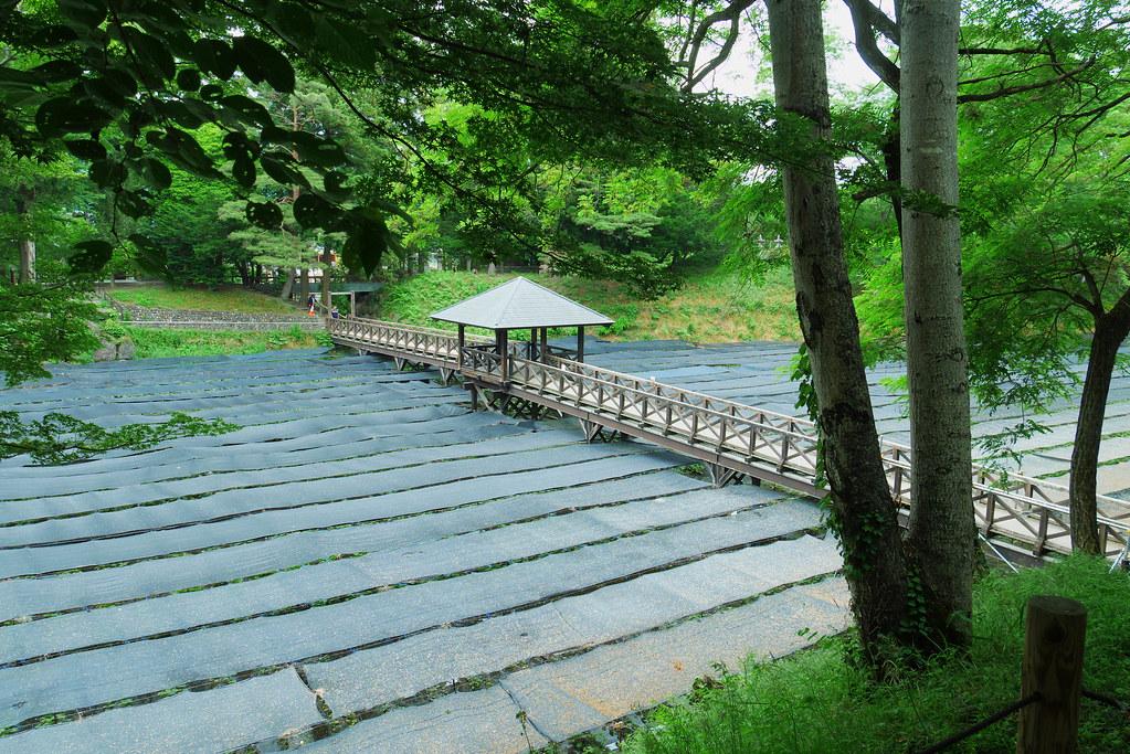 信州安曇野大王わさび農場の黒いシートで覆われたわさび田と橋