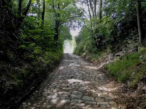 Sunken road in Diest