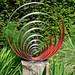 The Formal Garden at Coughton Court - spirals sculpture