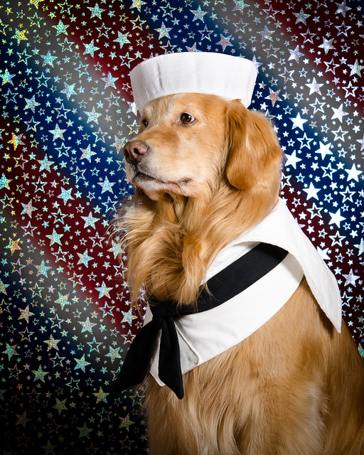 Sea Dog?