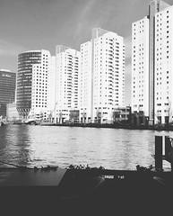 Rotterdam times