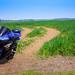 Yamaha R6 In A Field
