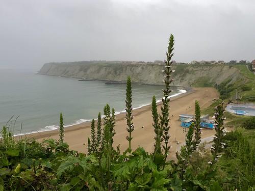Playa Arrigunaga