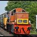 No D9551 No 50049 Defiance 18th May 2018 Severn Valley Railway Diesel Gala Bewdley