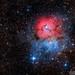 Trifid Nebula by neilcreek
