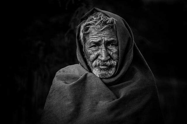 Herder of Pushkar   2012