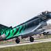 "Eurofighter Typhoon ""Ghost Tiger"""