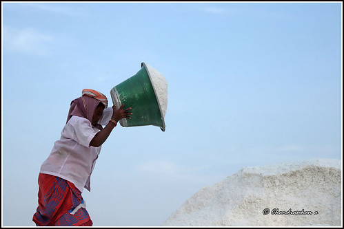salt marakkanam tamilnadu india saltpans canoneos6dmarkii tamronef28300mm
