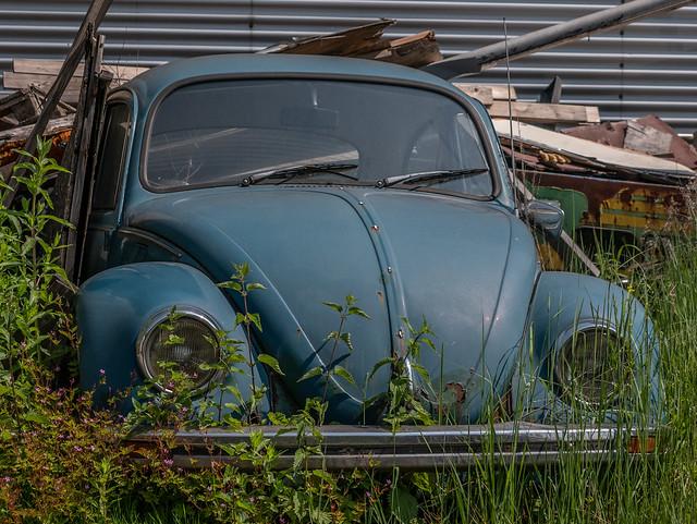 301/365  Abandoned