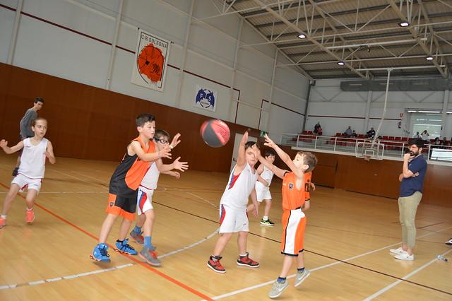 Trobada Escoles de Bàsquet a Solsona 2018