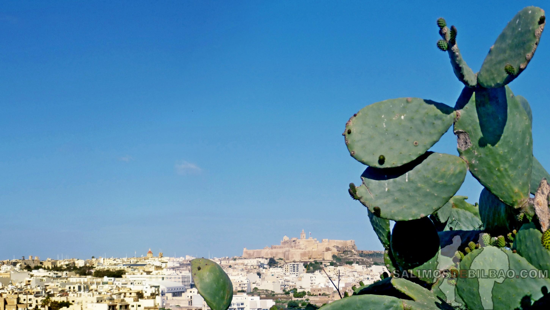 0519. Pano, Ciudadela de Victoria desde Xaghra, Gozo