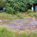 El Chato Tortoise Reserve-3854 by kasiahalka (Kasia Halka)