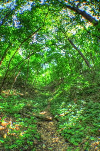 IMG_7171_2_3_HDR_PAINTERLY2