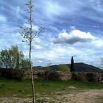 Opiniones sobre Alameda Del Valle