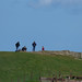 Great Orme Country Park - top of the hill