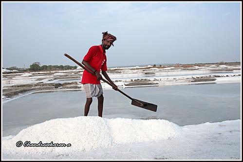 saltpan marakkanam tamilnadu india salt canoneos6dmarkii tamronef28300mm crystalseasalt