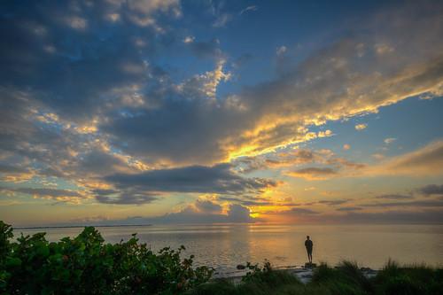 sunset water ocean beautiful florida emersonpoint palmettoflorida manateecounty silhouette person floridasunset beach beachsunset gulfsunset gulf