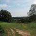 Looking to Longmoor    P6063608sm