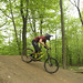 The Local Shredder posted a photo: