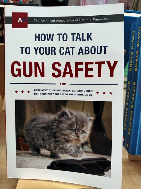 What Every Cat Owner Needs