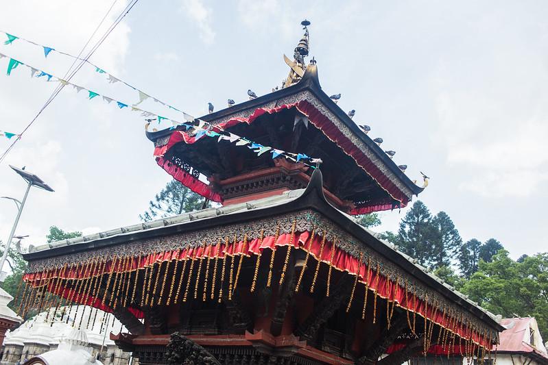 Nepal 2018_-73